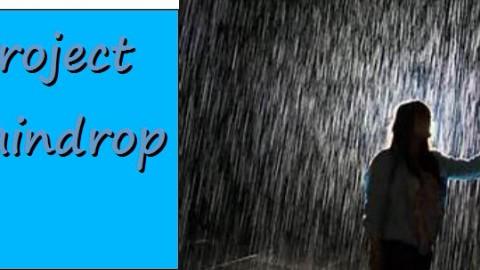 Project Raindrop