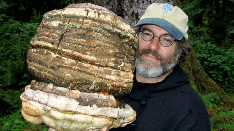 One Man Holds A Patent That Could Crush Monsanto And Change The World