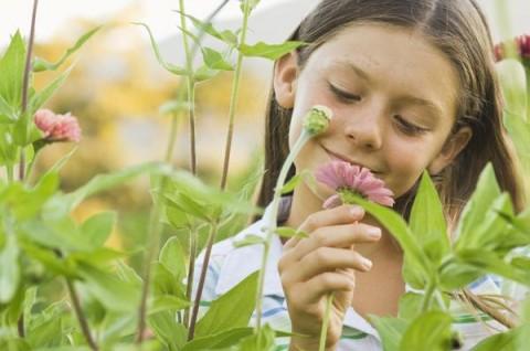 Nurturing Your Child's Emotional Development   Michele Cempaka
