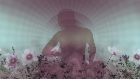 Meditations Bringing in Feminine Wisdom