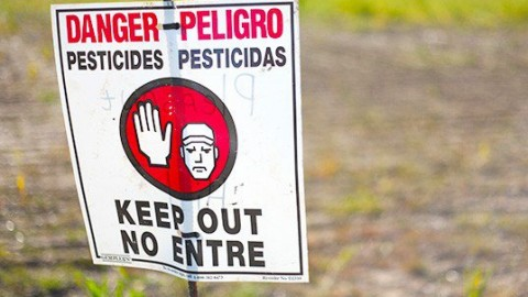 The World's Most Credible Medical Journal Outlines Bad News For Monsanto