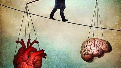 The Head vs. The Heart