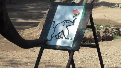 Watch This Incredible Video of an Elephant Painting a Portrait of Himself