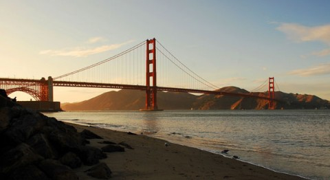 """Monsanto Sued by Oakland for """"Long-Standing Contamination"""" of SF Bay"""