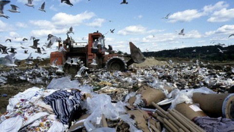 Sweden Runs Out Of Garbage: Only 1% Ends Up In Landfills
