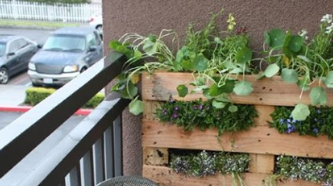 No Yard? No Problem: 5 DIY Garden Projects For People Who Don't Have Space For A Garden