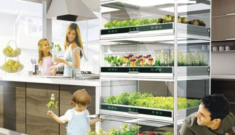 Urban Cultivator Archives - New Earth Media