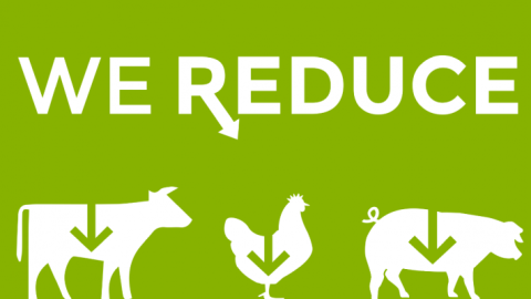 Want To Help The Environment, End Animal Suffering, And Improve Your Health? Become A Reducetarian!