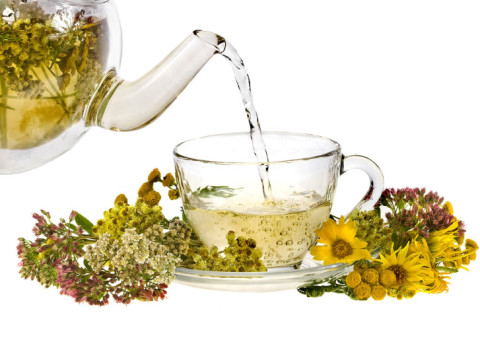 Ten Teas From Plants Around You And Their Benefits