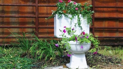 Composting Toilets Emerge as Viable Alternatives