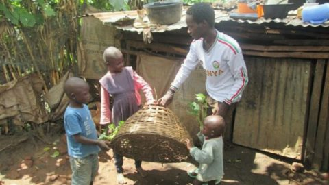 Returning to Permaculture Basics – YAP Proposal by Yongo Otieno Wycliffe
