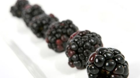 Andanthocyanins from Black Raspberries Demonstrate Powerful Cancer Fighting Power