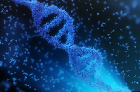 Physicists Discover A Second Layer Of Information Hidden In Our DNA