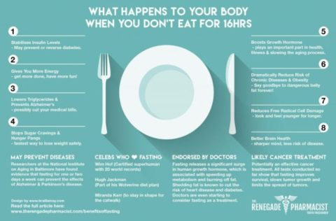 What Happens To Your Body When You Don't Eat For 16 Hours (Infographic)