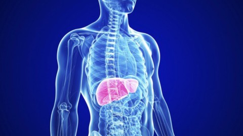 19 Super Foods That Naturally Cleanse Your Liver