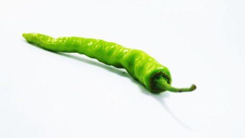 Capsaicin – Spice, Medicine and Pepper Spray