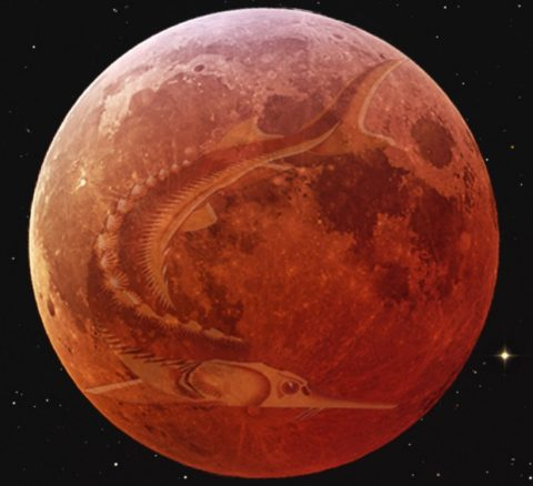 Understanding the Spiritual Energies of the Full Moon in Aquarius on August 18th, 2016