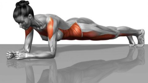 How Planking Is Great For Overall Health & How You Should Do It