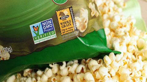 Monsanto's Scrambling to Bury Breaking Story About What's in Most of our Food? Not a Surprise