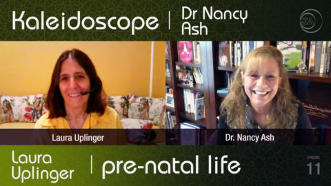 Pre-natal Life – Laura Uplinger