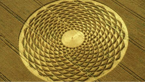 Astonishing Crop Circles Amaze Researchers