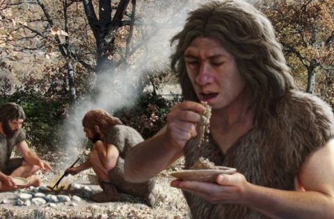 New Information Has Some Experts Wondering If 'Human Ancestors' Were Nearly All Vegetarians