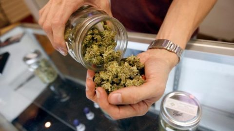 Colorado Sold Over $1.1 Billion In Cannabis Last Year — Money That Didn't Go To Drug Cartels