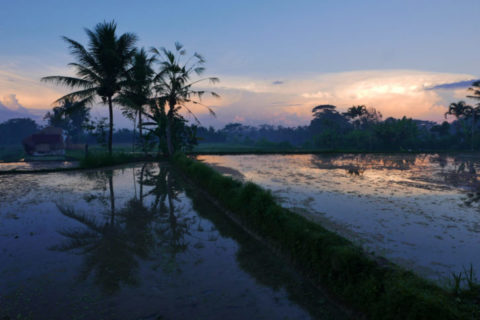 A Call to Protect Our Waters – Ancient Futures NewEarth Festival and Oceans Care Join Forces in Bali