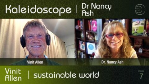 Kaleidoscope TV: Sustainable World with Vinit Allen