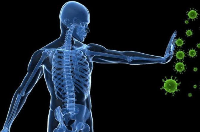 Study Shows How Fasting For 3 Days Can Regenerate Your Entire Immune System Bodypowerful759x500-672x443