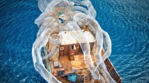 Eco Artists Build Gigantic Octopus To Save Coral Reefs In The British Virgin Islands
