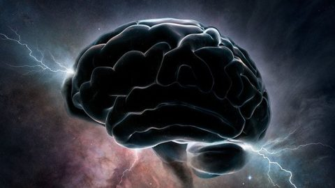 Why Humans Have Such Big Brains