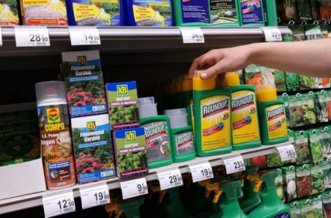 Study Finds Long Exposure To Tiny Amounts Of Monsanto's Roundup Damages The Liver & Kidneys
