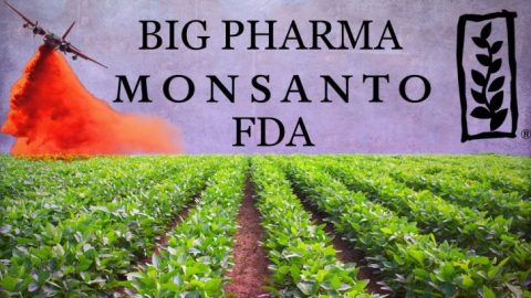 Racketeering Love Triangle: Monsanto, FDA, Big Pharma