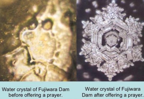 Image result for masaru emoto