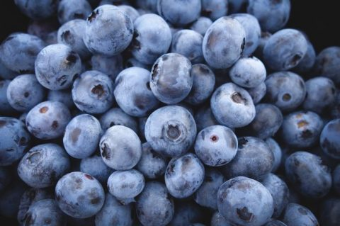 New Study: Improve Memory and Overall Brain Activity by Eating Blueberries