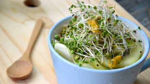 Broccoli Sprouts and Green Tea Nutrients Transform Lethal Breast Cancers into Highly Treatable Form