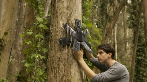 Activists Deploying Recycled Solar Powered Cell Phones in Fight to Save Rainforests