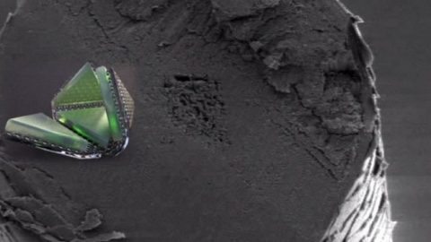 Scientists Create Shape-Shifting, Cell-Sized Robot That Could Change the World