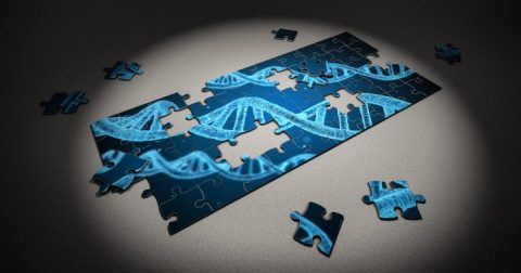 Genes and Genetic Testing – The Revealing Truth