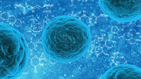 Chemotherapy Discovered to Fuel Cancer Regrowth, Researchers Reveal
