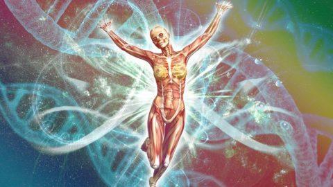 How To Avoid Autoimmune Disease – Part 1